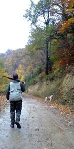 Un cazador transita con su perro por una pista forestal del acotado del Valle de Mena