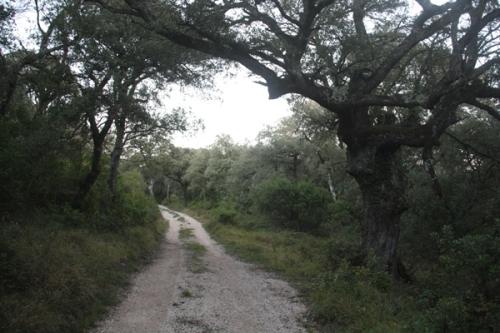 El coto de caza de Valle de Mena se caracteriza por su biodiversidad
