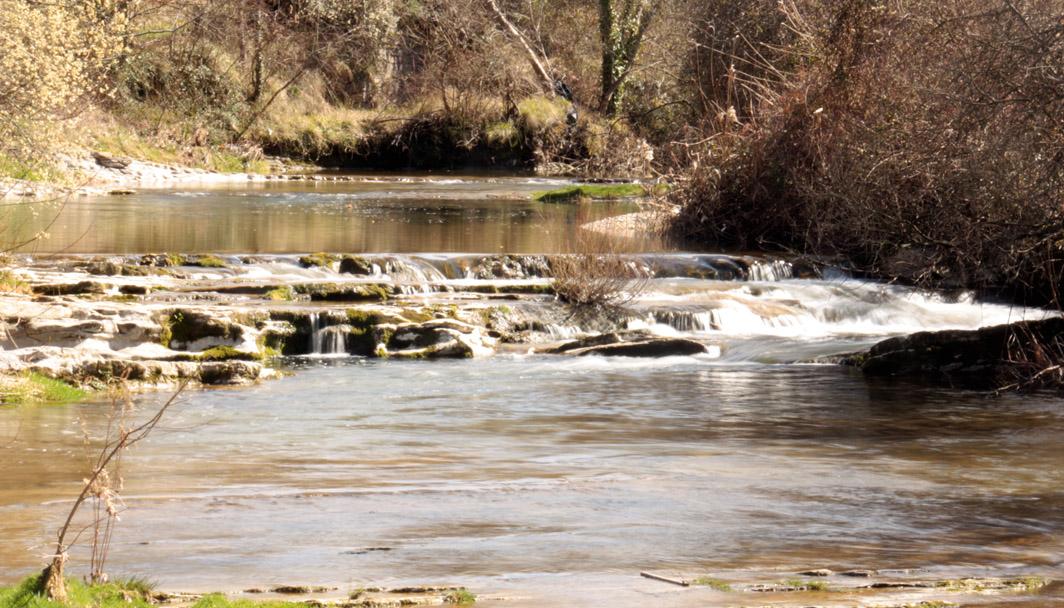 El río Cadagua a su paso por Maltrana