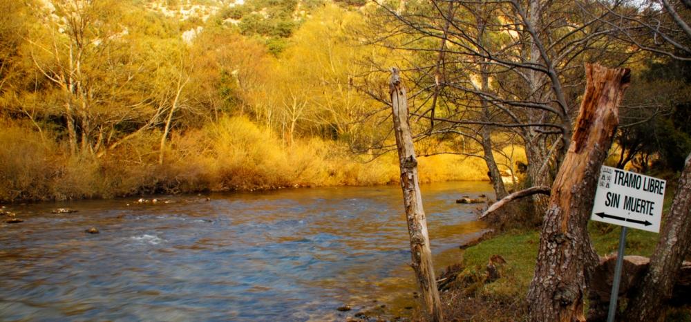 Pesca a ninfa en los ríos del norte de Burgos (1/3)