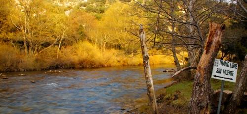 Tramo sin muerte en el río Ebro (Burgos)