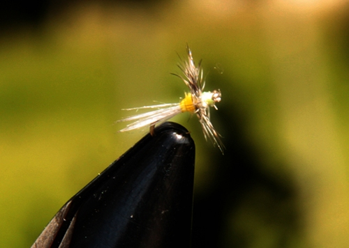 Díptero para la pesca de truchas