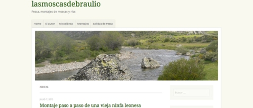 blog lasmoscasdebraulio